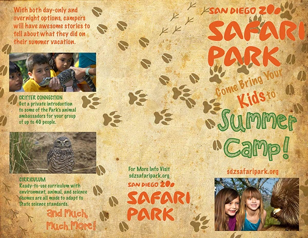 Zoo Safari Park Brochure