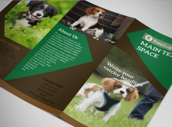 Dog Kennel & Pet Day Care Brochure