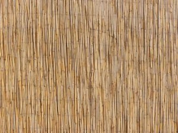 12 Thatched Roof Textures Psd Vector Eps Format Download