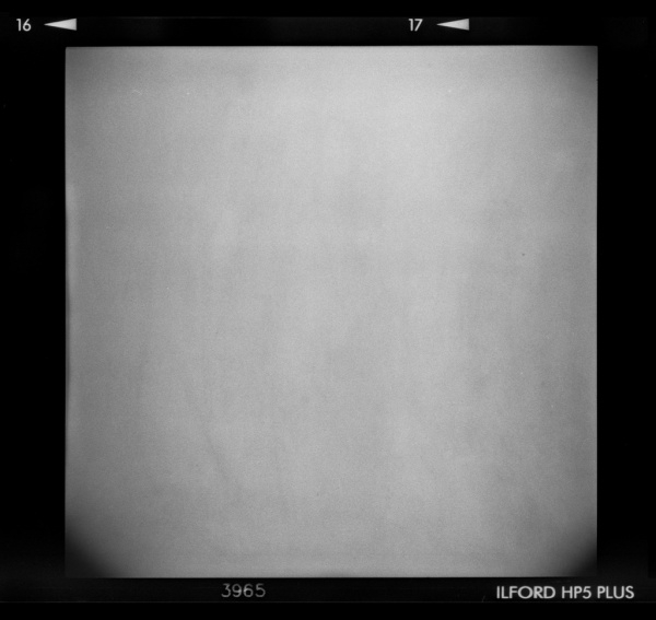 Holga Film Landscape Texture