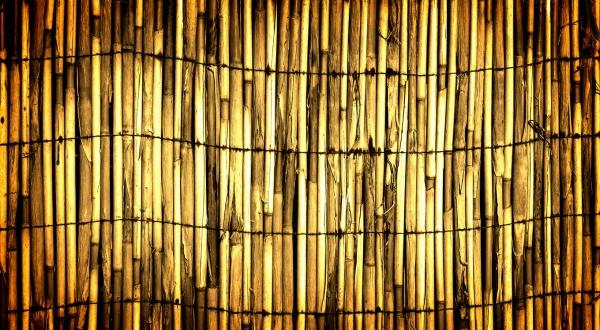 Abstract Bamboo Wall Texture