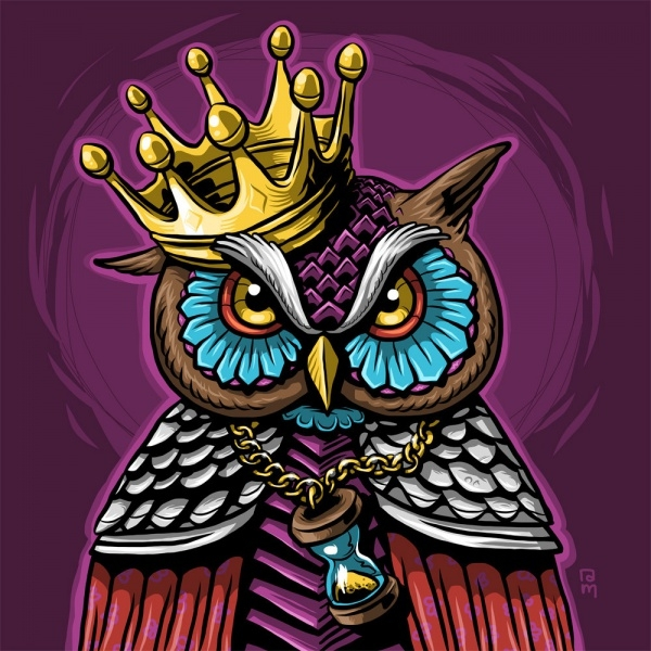 Amazing Owl Illustration Design