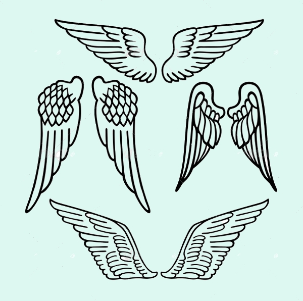 Angel Wing Vectors
