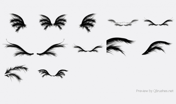 Black Decorative Wings brushes