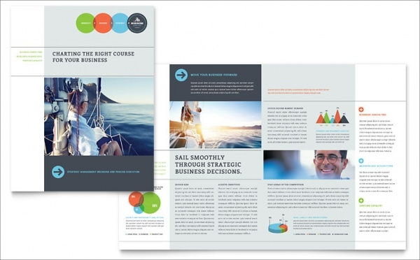 Business Professional Analyst Brochure