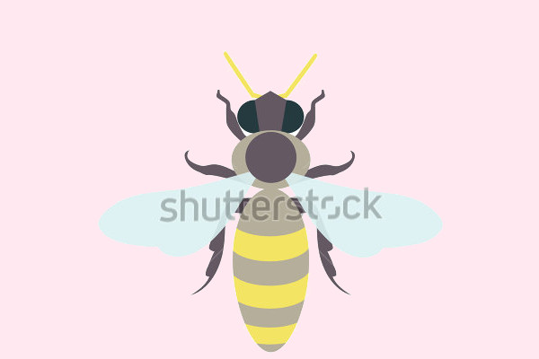 Buzz Flat Logo Design