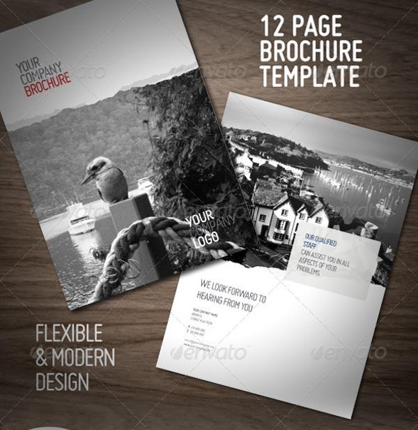 Clean Professional Brochure Design
