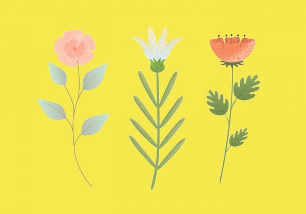 Decorative Vector Flower Illustration