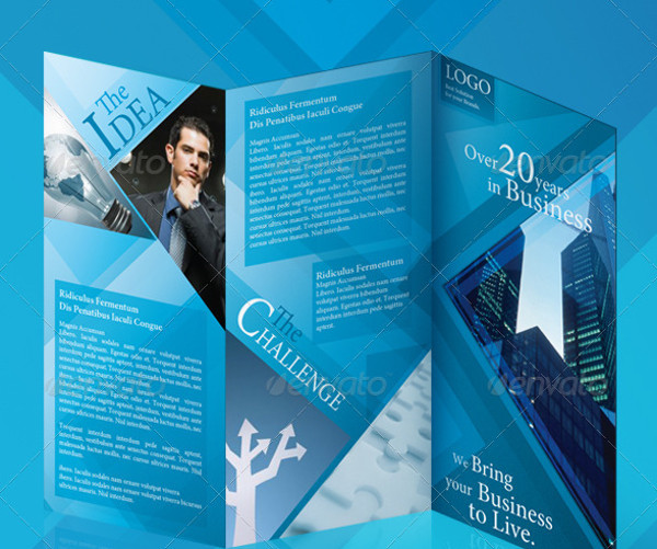 Die Cut Tri Fold Brochure