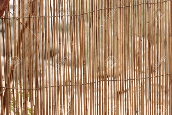 Download Wood Cane Texture