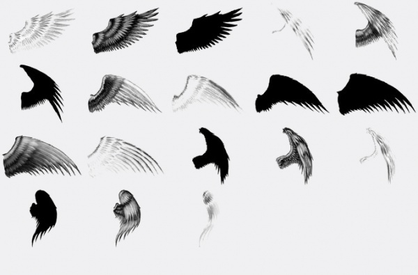 Elegant Wings Brushes For Desktop
