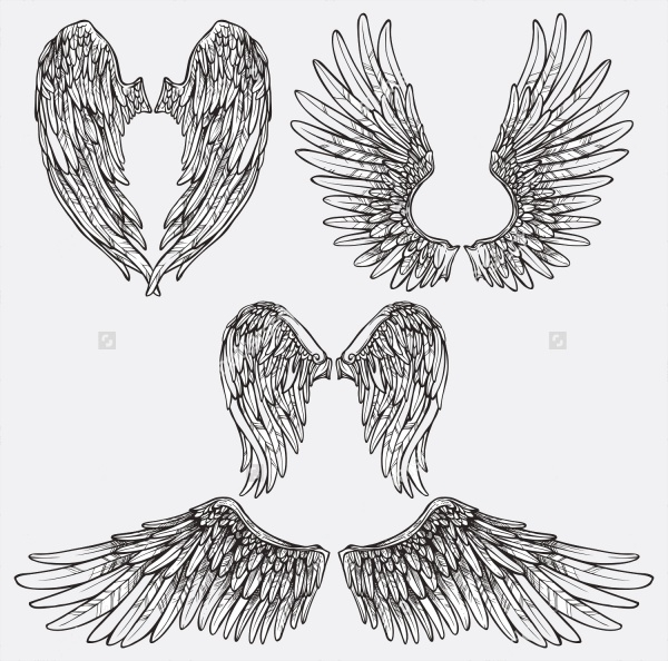 Fantasy Wings Brushes