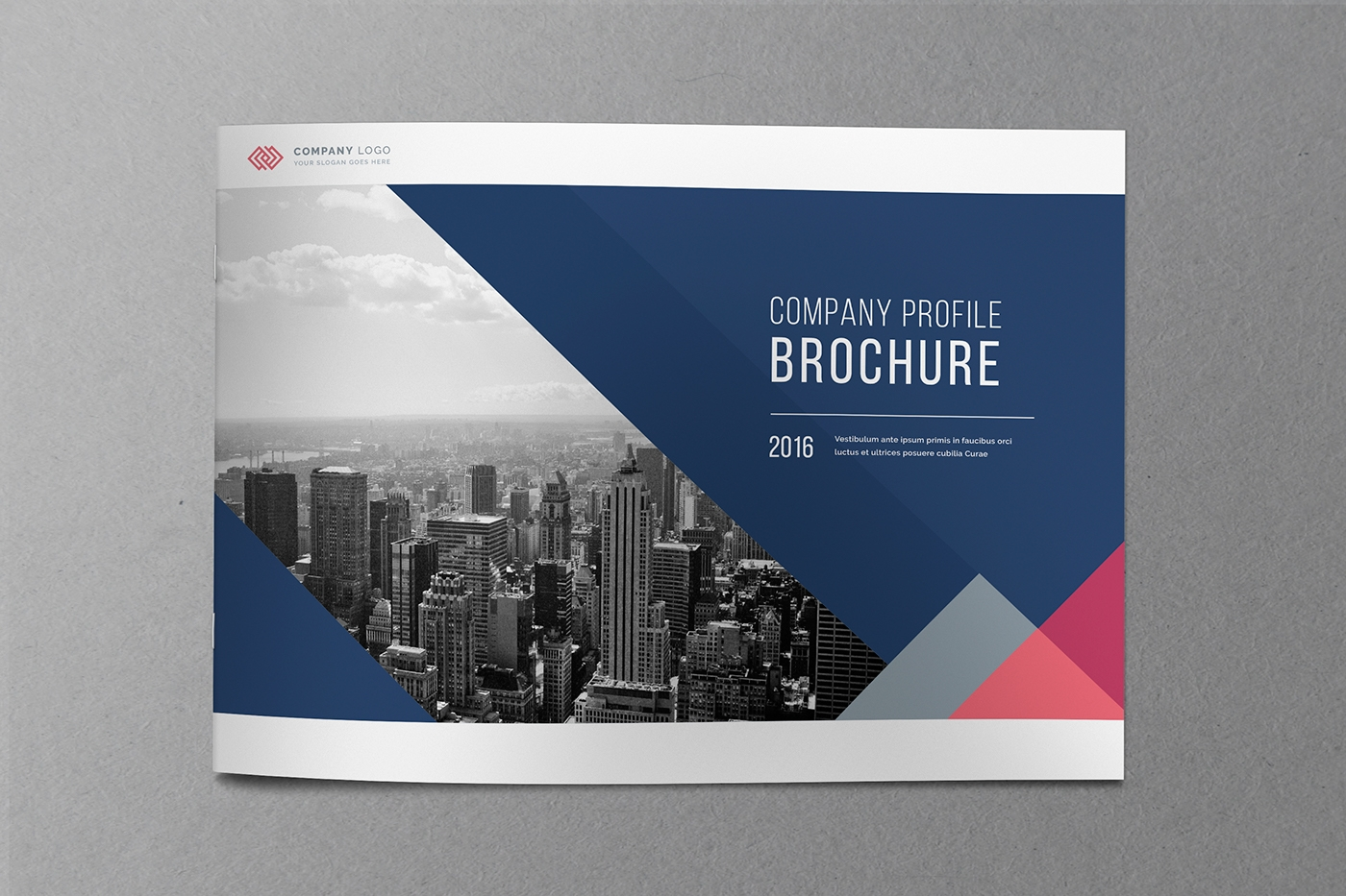 financial company brochure template
