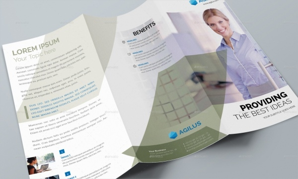 Financial Economy Brochure