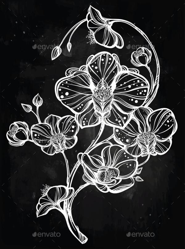 Flower Orchid Hand Drawn Illustration