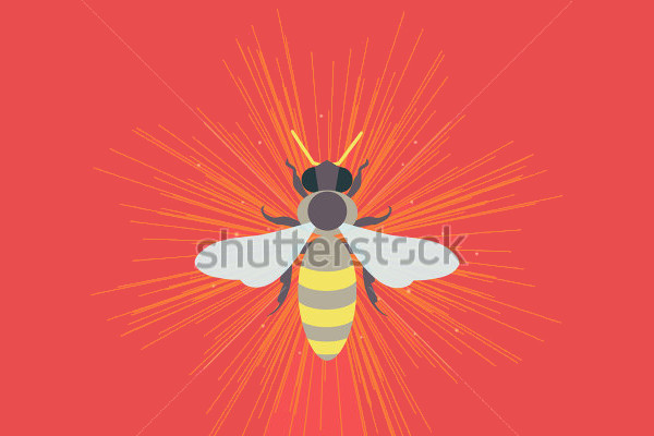 Honey Bee Logo Design