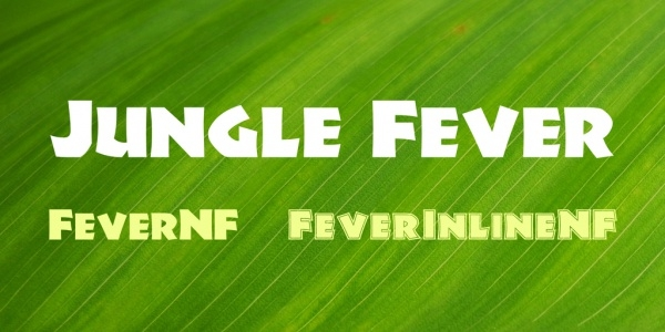 Jungle Fever Adventurous Font Family