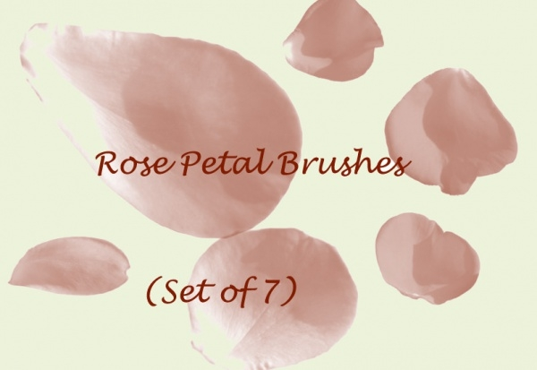 Nature Petal Cascade Brushes