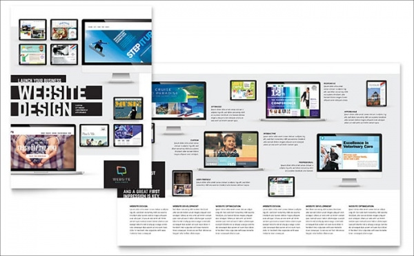 Professional Website Designer Brochure