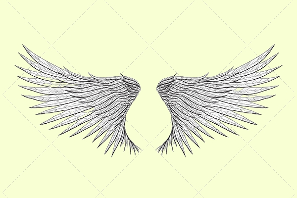 Tattoo Wings Vector Illustration