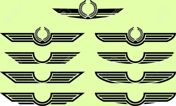 Thin Outlined wings Vector