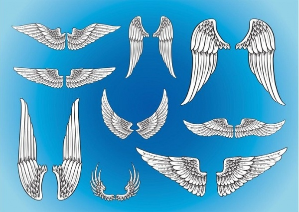 Vector Art Eagle Wings