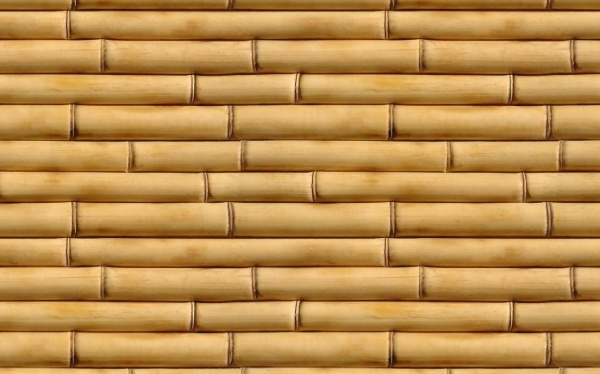 Vertical Striped Bamboo Patterns