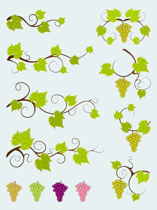 Vine Design Elements Vector