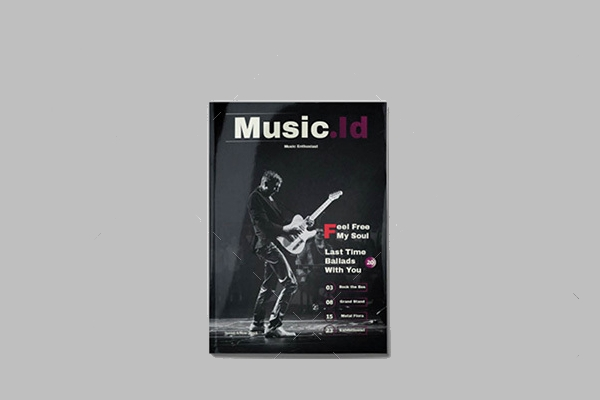 pop cultrure Music Id Magazine