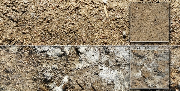 10 Soil & Dirt Texture Design