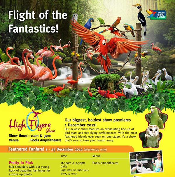 Bird Park - High Show Flyer