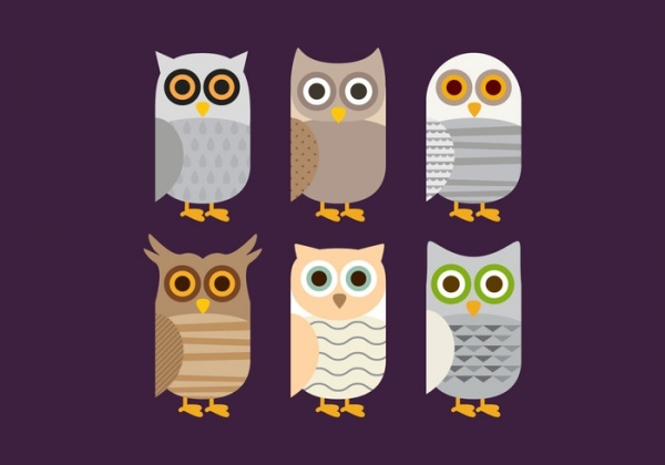 Colorful Barn Owl vector
