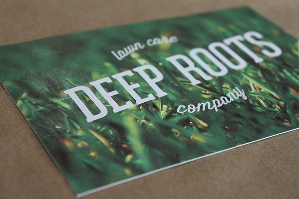 Deep Roots Lawn Care Flyer