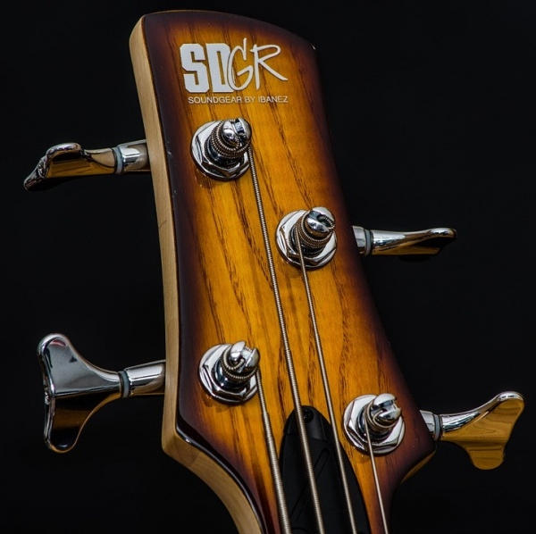 E- Bass Guitar Music Vector