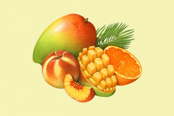 Elegant Creative fruit Illustration