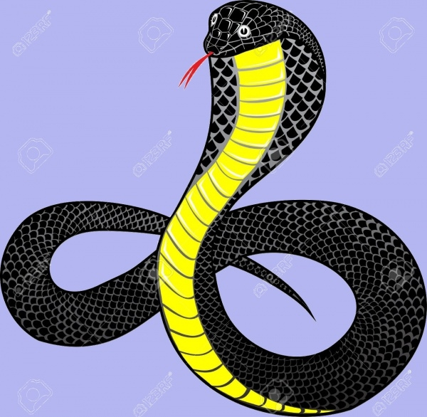 Fantastic Vector illustration snake
