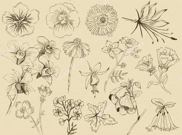 Flower Sketches Gimp Brushes