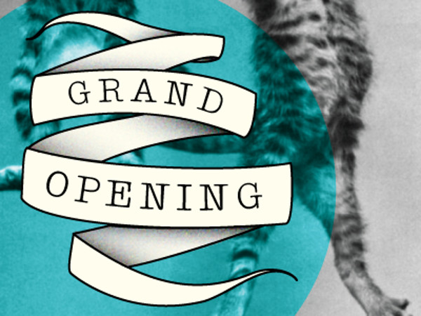 Fully Editable Grand Opening Banner