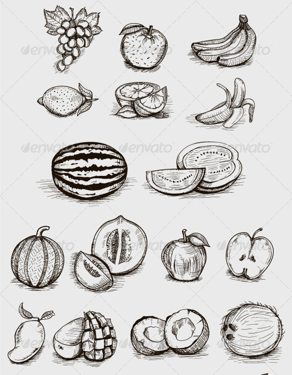 Hand Drawn Fruit Illustration