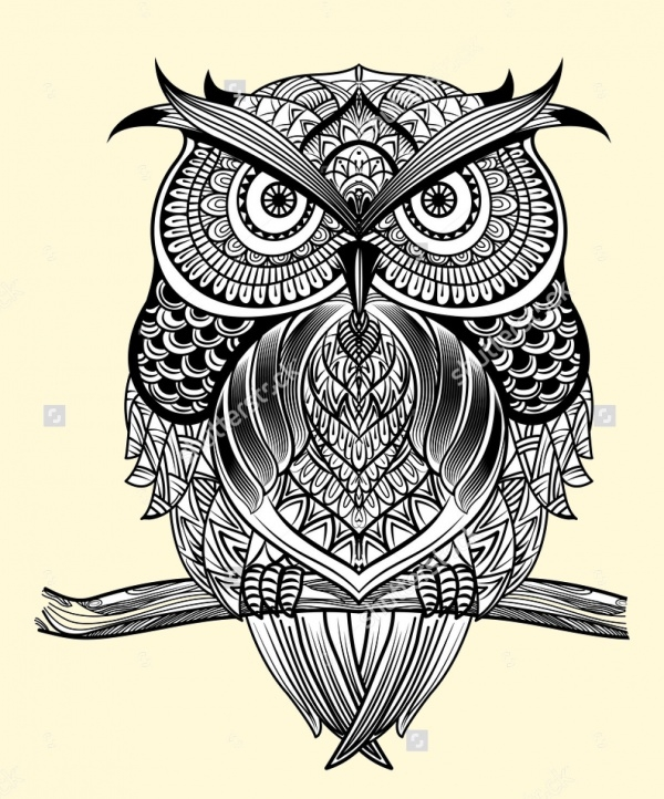 Hand Drawn Owl Head Vector