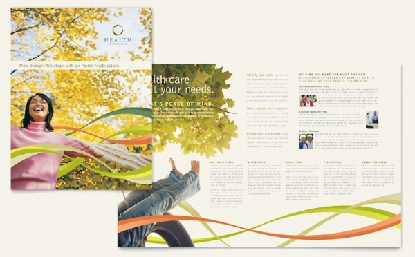 Insurance Management Brochure Design