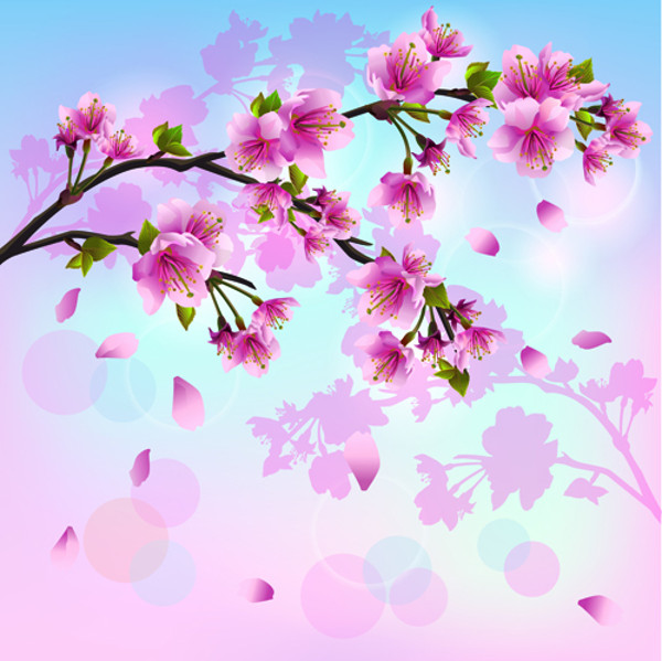 Japan Cherry Blossoms Pattern