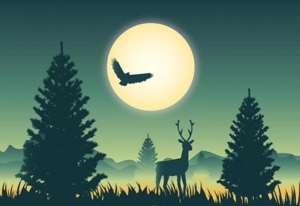 Landscape horizon Scene Illustration