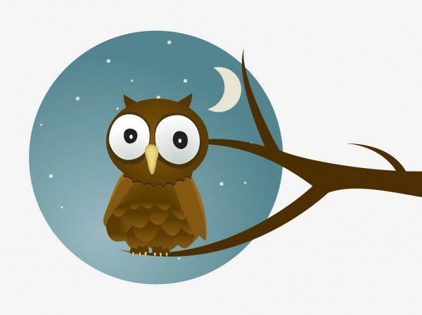 Nighttime graphics Owl Vector