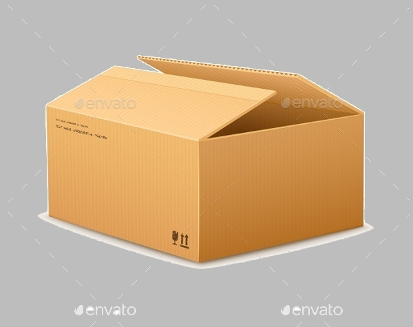 Opening Cardboard Delivery Packaging Box