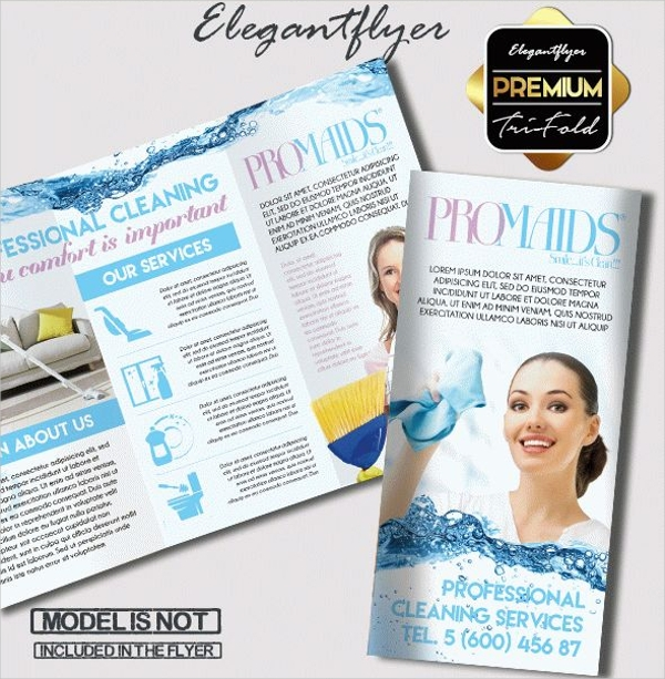 Professional Cleaning Service Brochure Design