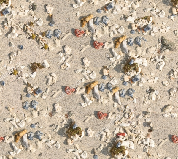 Seamless Beach Texture Download