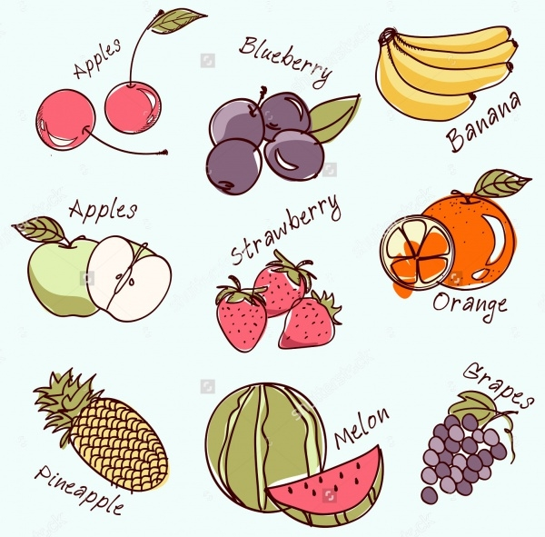 Vintage Fruit Illustration With Names