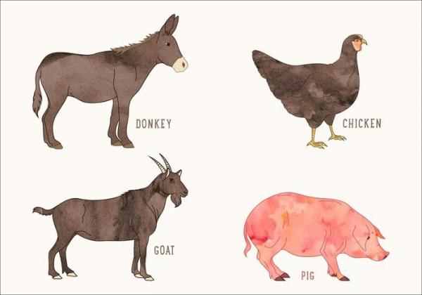 Watercolor Farm Animals Illustrations