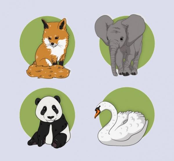 Wild animal Natural illustrations